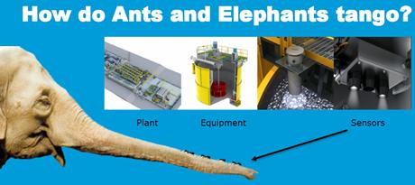 ElephantAndAnts